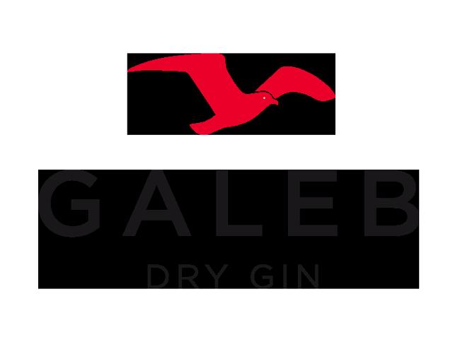 GalebGin